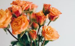 The Logistics Of Flowers | Cold Supply Chain