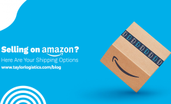 Selling On Amazon? Here Are Your Shipping Options